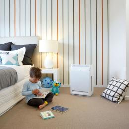 Daikin Home Ideas Auckland 2